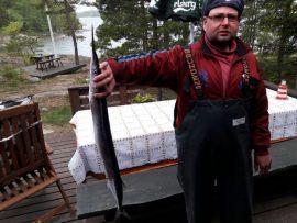 Kristian Elona pyydystämällä nokkakalalla oli myös pituutta melkoisesti.