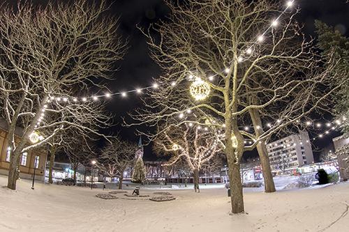 Rauhanpuiston valoja. Kuva Janne Kari.